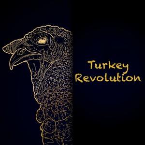 Graphic design with turkey