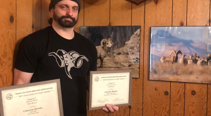 Wildlife Journalist Honored For Bighorn Writings